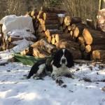 Pomáhám se dřevem.